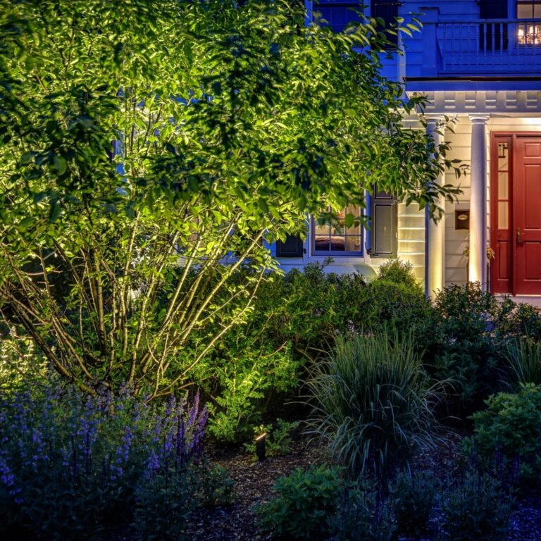 wgn mike, mike's landscape lighting, outdoor lighting in chicago